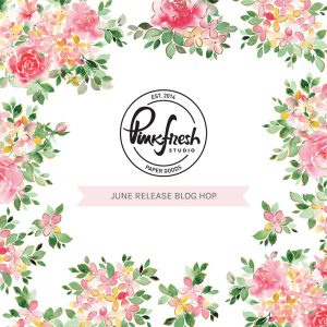 Pinkfresh Studio June 2021 Washi, Stamp, Die, Stencil and Hot Foil Release!